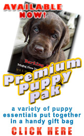 Red Labs of Luv Premium Puppy Pak